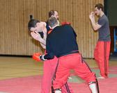 SM_20130413-Kampfsportworkshop-0005-5714.jpg