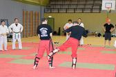 SM_20130413-Kampfsportworkshop-0037-5755.jpg