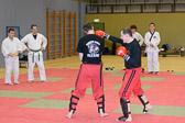 SM_20130413-Kampfsportworkshop-0038-5756.jpg