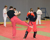 SM_20130413-Kampfsportworkshop-0049-5770.jpg