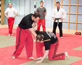 SM_20130413-Kampfsportworkshop-0107-5845.jpg
