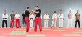 SM_20130413-Kampfsportworkshop-0129-5871.jpg