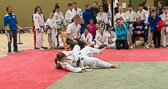 Sabrina Meißner verstärkt die Mannschaft von Kim Chi Wiesbaden im Schwergewicht. Hier siegt sie im Kampf gegen Bushido Wüstems.