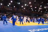 SM_20140222-Judo_Grand_Prix_Duesseldorf_Day2-0003-4762.jpg