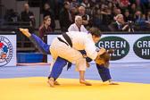 SM_20140222-Judo_Grand_Prix_Duesseldorf_Day2-0061-2952.jpg