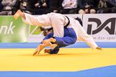SM_20140222-Judo_Grand_Prix_Duesseldorf_Day2-0071-2964.jpg