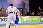 SM_20140223-Judo_Grand_Prix_Duesseldorf_Day3-0150-4096.jpg