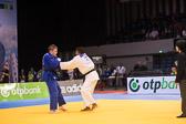 SM_20140223-Judo_Grand_Prix_Duesseldorf_Day3-0342-4313.jpg