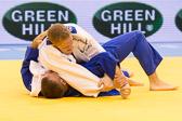 SM_20140223-Judo_Grand_Prix_Duesseldorf_Day3-0612-4628.jpg