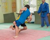 SM_20140719-Judo_Safari-0223-3145.jpg