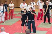 SM_20141122-17_Kampfsportworkshop-0014-4983.jpg