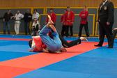 SM_20150314-Oberliga_2KT_Lorsch-0053-9126.jpg
