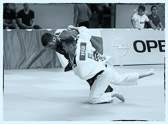 Rüsselsheim, 30. Mai 2015: Bundesliga 3. Kampftag Judo-Club Rüsselsheim vs. JSV Speyer