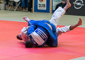 SM_20150530-Bundesliga_3KT_JCR_vs_Speyer-0256-0863.jpg
