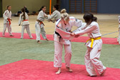 xHD_20150621-DJB_Ippon_Girls_Buerstadt-0008-0460.jpg
