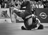 bis 81 kg: David Riedl - Lars Kilian 0:7 (Kampfzeit: 5:00)